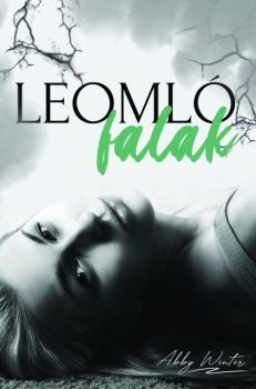Abby Winter - Leomló falak (ebook)