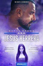 Borsa Brown - Jesus Herrera (nyomtatott)